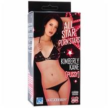 KimberlyKanePocketPalatBetterSex.com